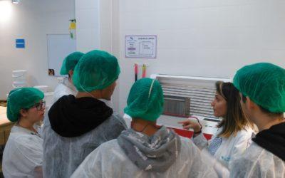 Els alumnes del taller d'inserció sociolaboral continuen la seua formació fora de l'aula